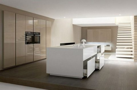 Minimalist kitchen with stylish cabinet