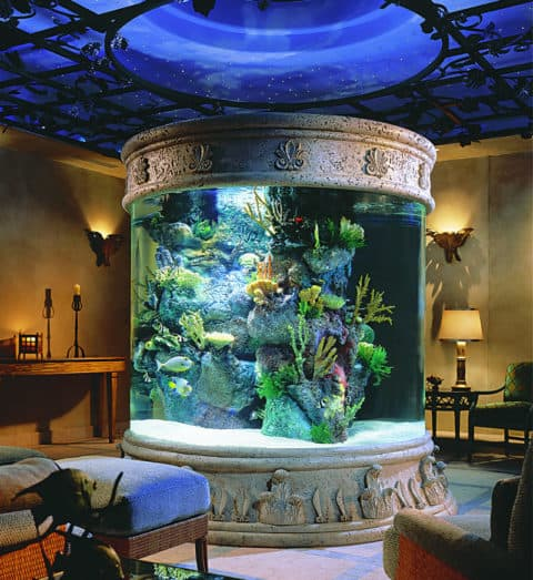 most luxury aquarium with classical concept