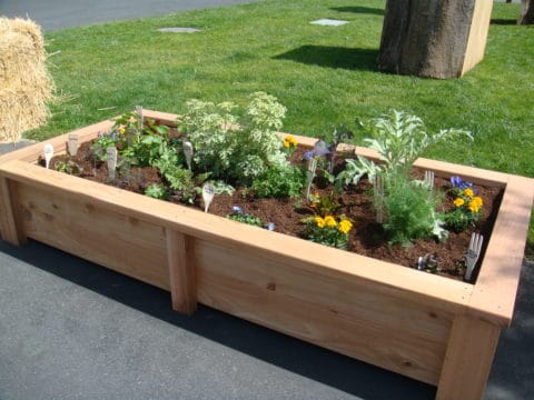 Beautiful raised garden beds