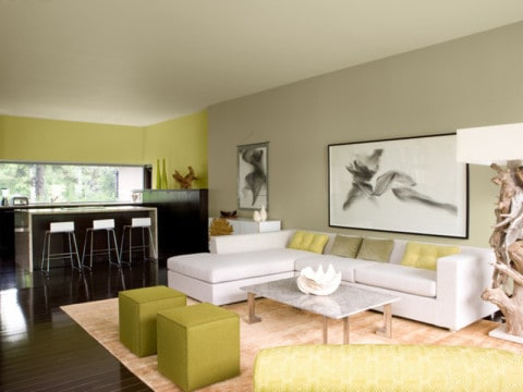 living room paint ideas with matching wall picture