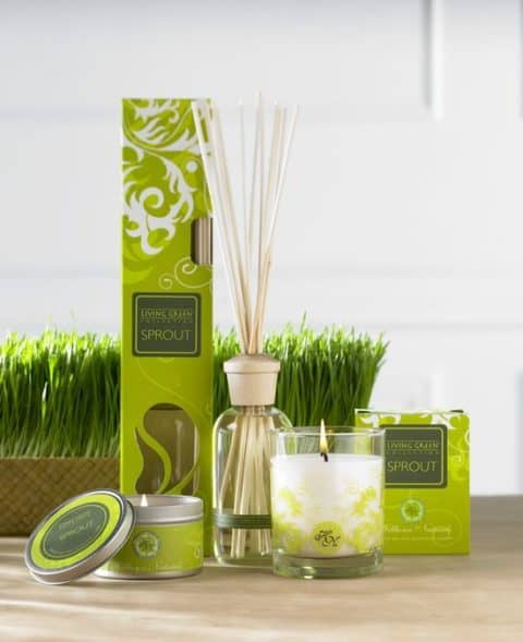 Fragrance for Home with fresh color