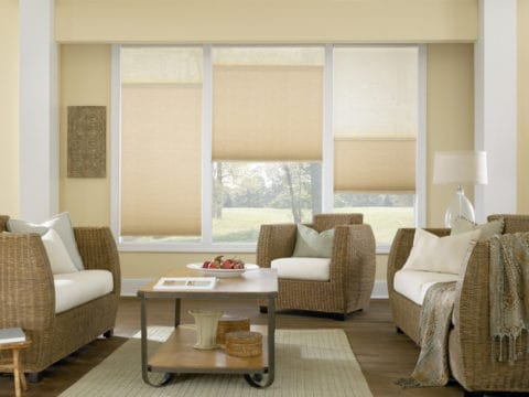 Cellular Shades for a cozy living room