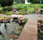 Backyard Ponds Design Ideas for All Budgets