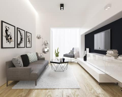 Modern living room with black and white theme